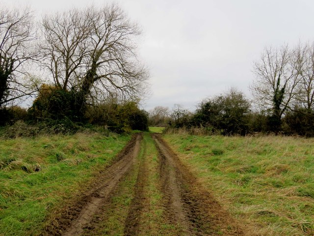 The footpath across South Hinksey Meadow