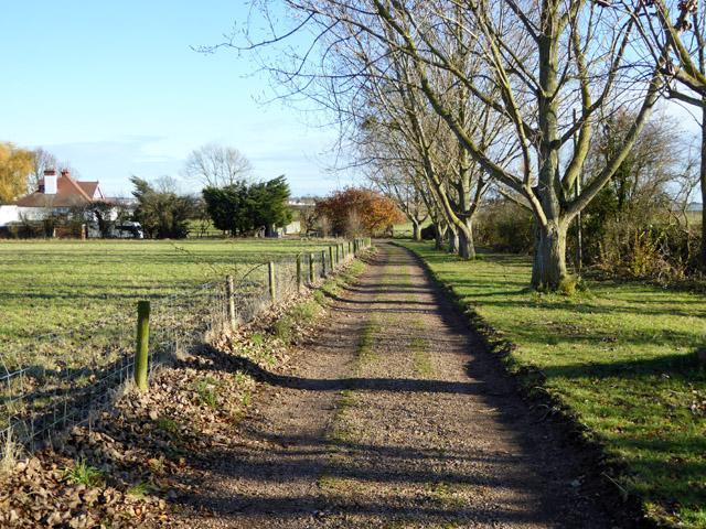 Track beyond end of East Road, East Mersea