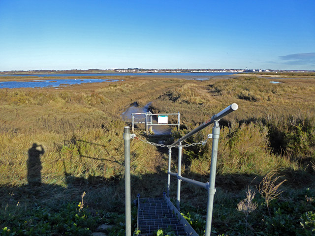 Golf Links sluice, Mersea Island