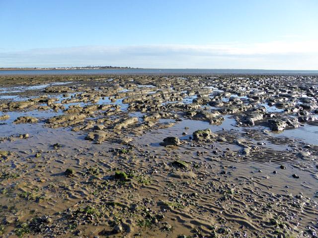 Mersea Flats
