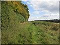SO8030 : Walking alongside Berth Hill by Jonathan Thacker