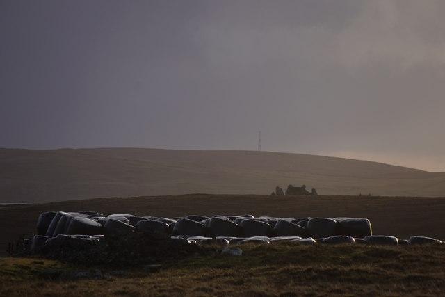 Silage bales, Uyea Breck, Uyeasound