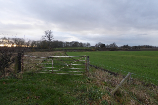 Farmland off Croft Lane