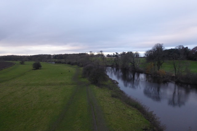 Wharfe from Tadcaster Viaduct