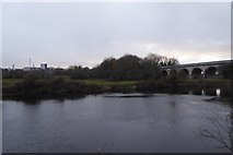 SE4843 : River Wharfe and Tadcaster Viaduct by DS Pugh