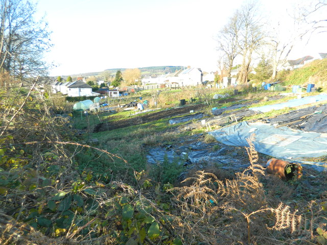 Allotments, Pontyclun
