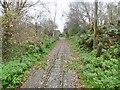 SP9325 : Leighton Buzzard Railway by Mike Faherty