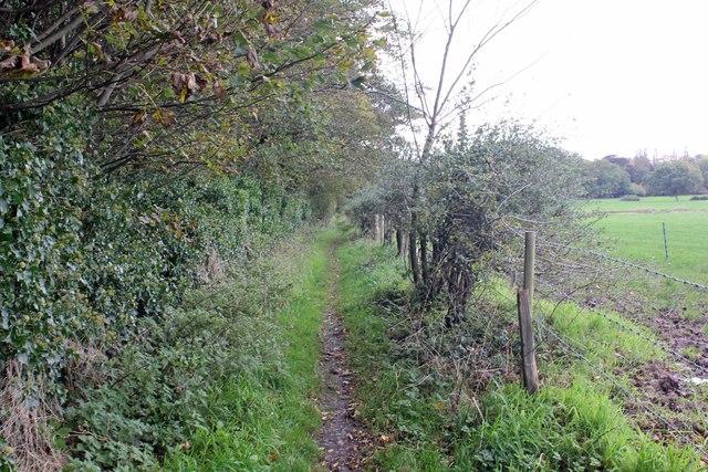 Path near Thornton Manor