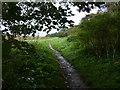 TF9443 : Peddars Way & Norfolk Coast Path at Warham Greens by Mat Fascione