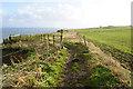 TA1874 : Headland Way towards Bempton Cliffs by Ian S