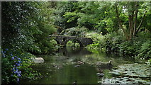 S8665 : Altamont Gardens, Co Carlow - footbridge by lily pond by Colin Park