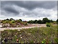 SJ9295 : Derelict land off Denton Link Road. by Gerald England