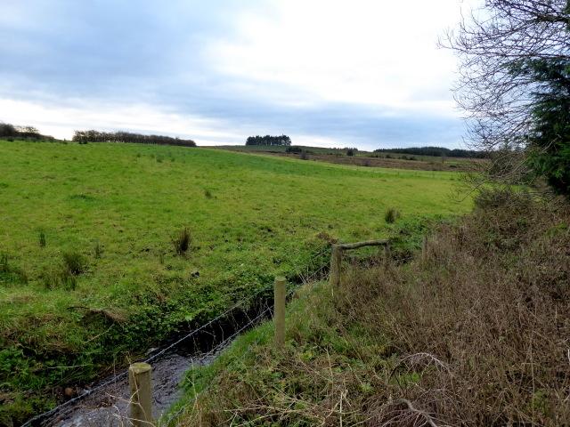 Clare / Mullaghslin Glebe