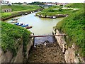 NZ3376 : Harbour, Seaton Sluice by Andrew Curtis