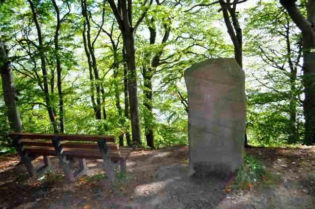 Millennium Stone at Craig Wood