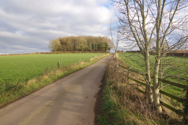 Track to Butts Farm