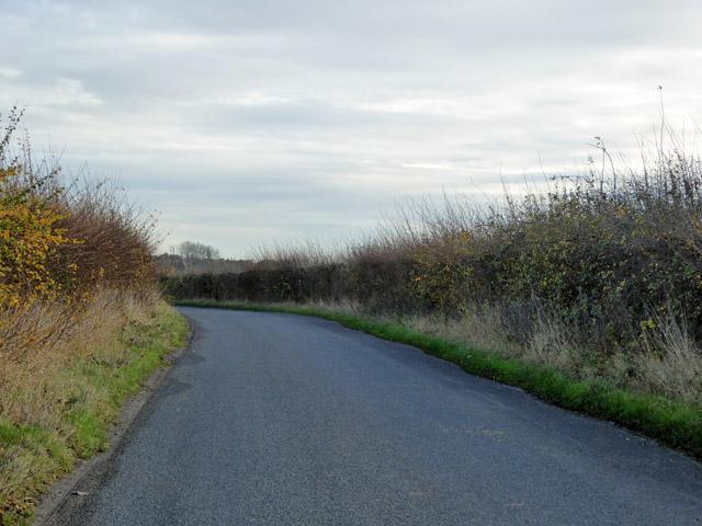 Winter's Road