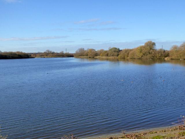 Abberton reservoir, west end