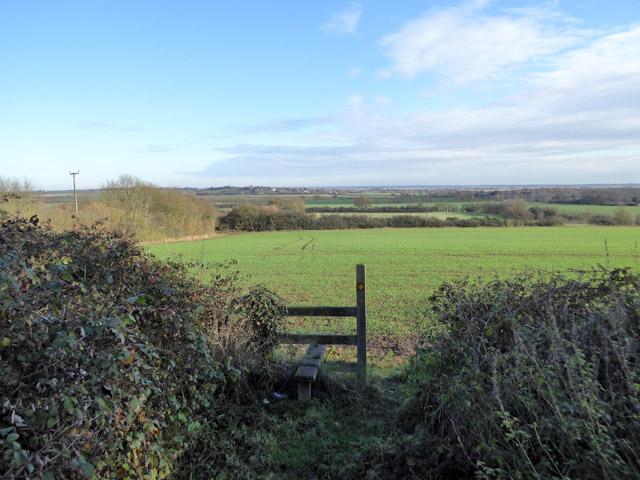 Fields behind Great Wigborough churchyard