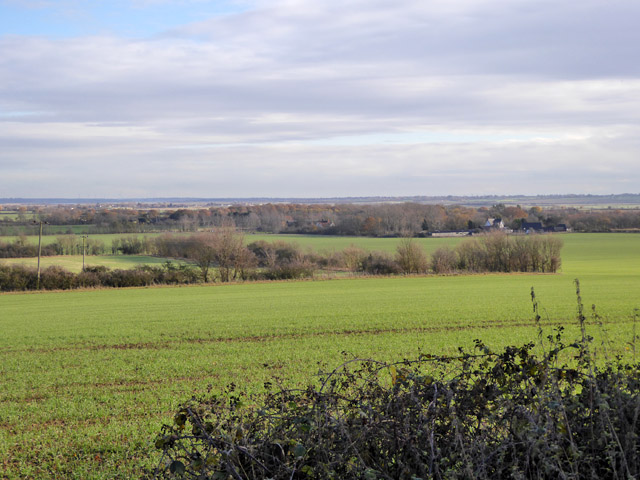 View east from Great Wigborough churchyard
