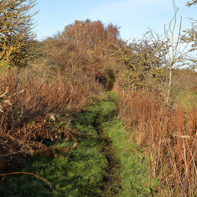 The Borders Abbeys Way near the site of Kirkbank Station