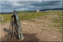 SX0489 : Gallos by Ian Capper