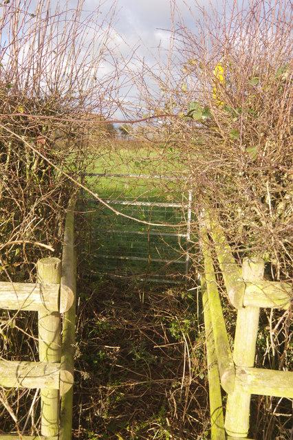 Footpath near Butts Farm