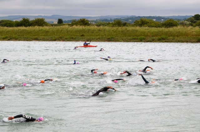 Openwater swimmers