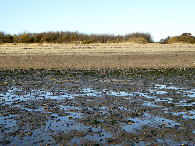 Looking from flats to upper beach, East Mersea