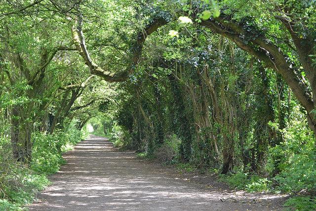 Long wide track, Newbold Comyn Park, Leamington