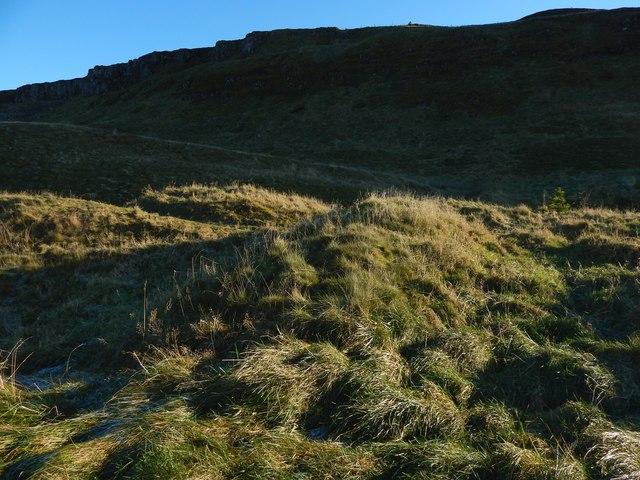 Ancient field bank