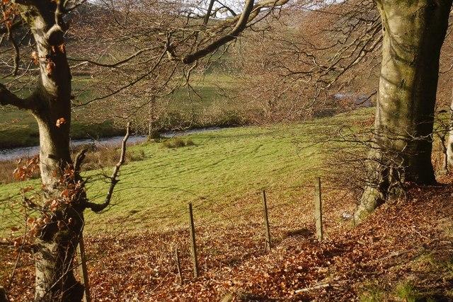 River Devon beside Fossoway Lodge