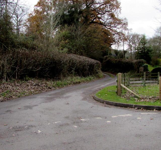 Rabbit Lane, Ewyas Harold