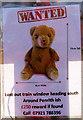 NY3662 : Have you seen Teddy? Blackrigg bridge - December 2017 by The Carlisle Kid