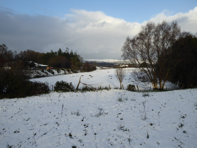 Snow, Mountjoy Forest West Division