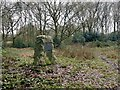 SJ8381 : Commemorative stone on Lindow Common by Graham Hogg