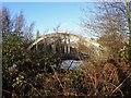 SK3934 : Bridge to an island in the Derwent by Ian Calderwood