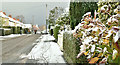 J3874 : Snow, Belmont Church Road, Belfast (December 2017) by Albert Bridge