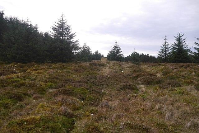 Clearing, Innerdouny Hill