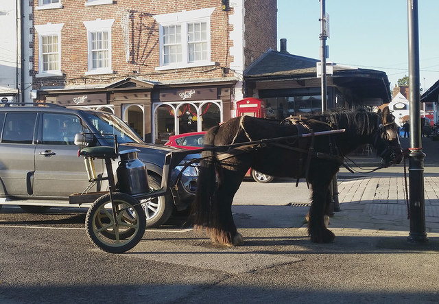 Traditional transport in Malton
