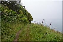 SX4851 : South West Coastal Path by N Chadwick