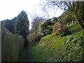 SK5949 : Footpath alongside Hollinwood House, south west of Calverton (1) by Richard Vince