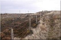 NO0407 : Coalcraigy Hill by Richard Webb