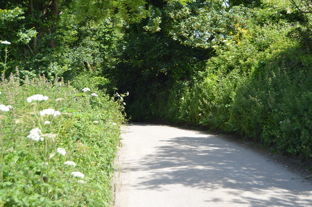 Lane in Rame