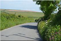 SX4249 : Rame Lane by N Chadwick