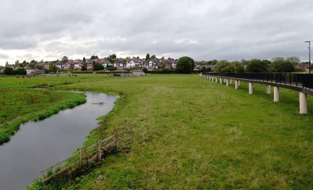Flood plain pasture east of Stafford