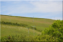 SX4250 : Grassy slope by N Chadwick