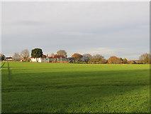TM2844 : Waldringfield: winter sunlight by John Sutton