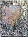 SJ6849 : Old Milepost by J Higgins
