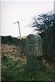 SX2185 : Old Milestone by Ian Thompson